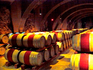 Barrel Cellar at Mission Hill.JPG